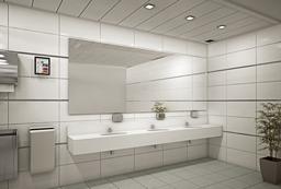עיצוב שירותים ציבוריים בבניין משרדים