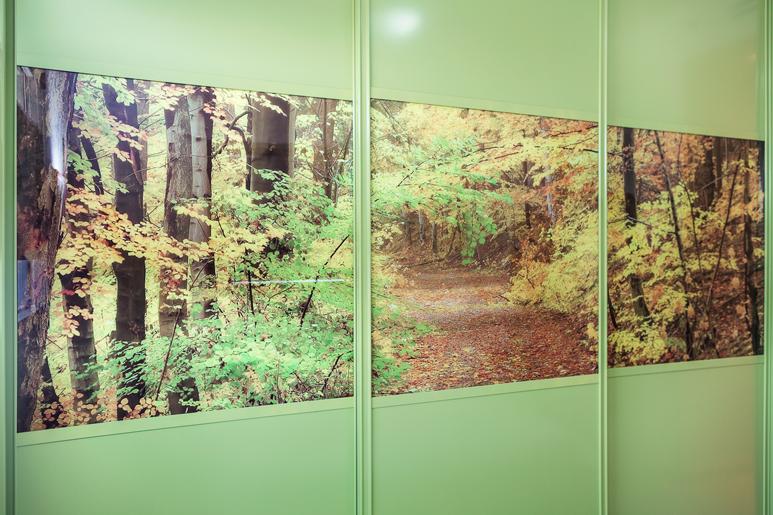 עיצוב ארון הזזה בחדר שינה - ארון בגמר צבע ירוק בשילוב זכוכית מודפסת עם דוגמת יער חורפי
