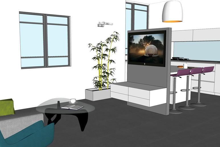 מבט אל המטבח וקיר הטלוויזיה הנמוך