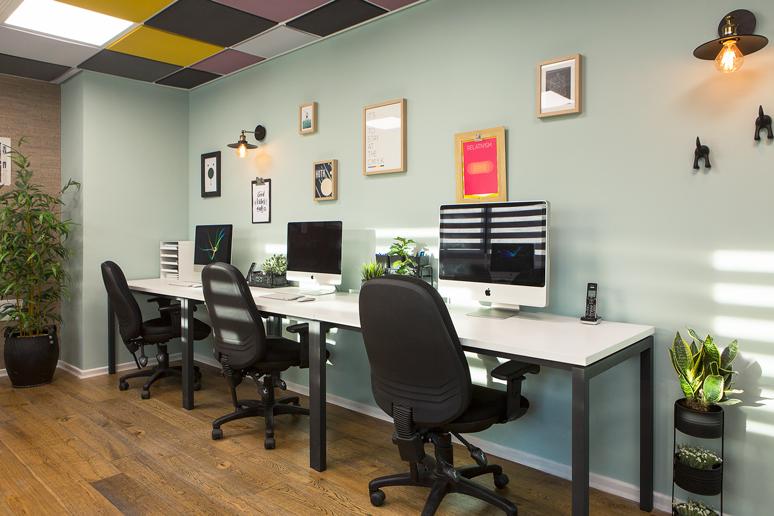 חדר העבודה של המעצבים - קיר צבוע ירוק מעושן, תקרה בשילוב אריחים בגוון סגול מעושן וצהוב חרדל